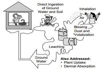 toxic chemicals in soil